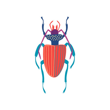 Cute Colorful Carabus Beetle Insect, Top View Vector Illustration