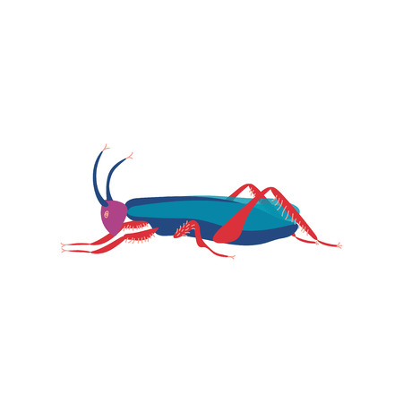 Cute Colorful Grasshopper Insect, Side View Vector Illustration Reklamní fotografie - 117143406