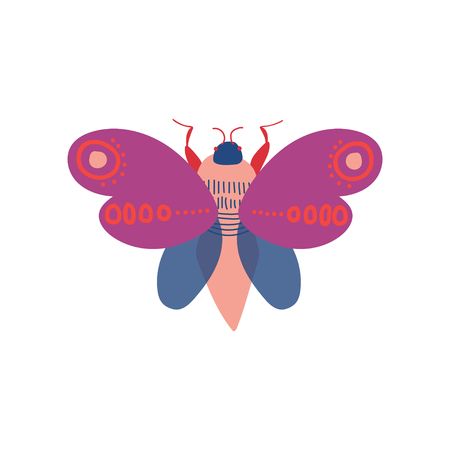 Cute Colorful Moth Insect, Top View Vector Illustration on White Background.