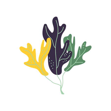 Underwater Seaweed, Marine Aglae Plant Vector Illustration on White Background.