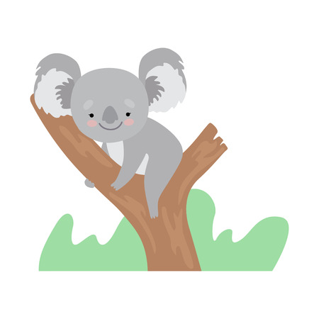 Cute Koala Bear Sitting on Tree Branch, Funny Grey Animal Character Vector Illustration on White Background. Ilustração