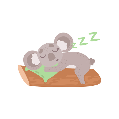 Cute Koala Bear Sleeping on Tree Branch, Funny Grey Animal Character Vector Illustration on White Background.