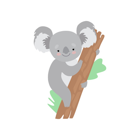 Cute Koala Bear Climbing Tree, Funny Grey Animal Character Vector Illustration on White Background.