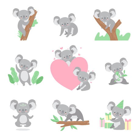 Collection of Cute Coala Bear Animals Cartoon Characters in Different Situations Vector Illustration on White Background.