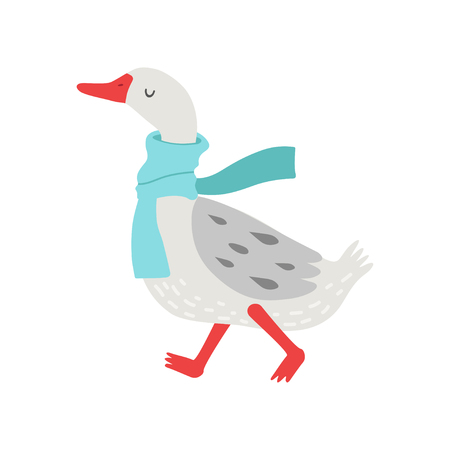 Cute White Goose Cartoon Character Walking with Warm Scarf Vector Illustration on White Background.