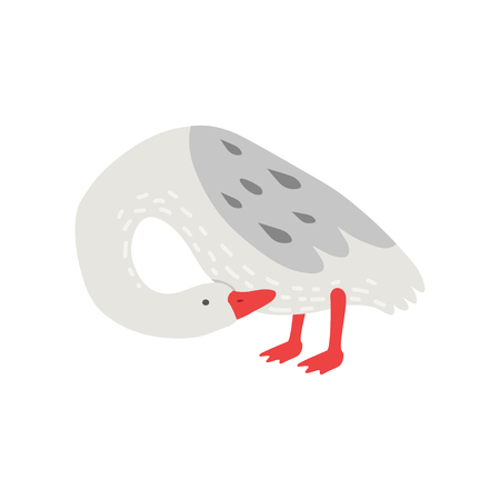 White Goose With Grey Wings, Cute Bird Cartoon Character Vector Illustration on White Background.