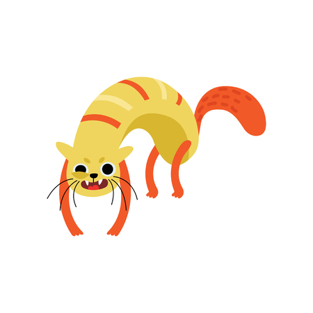 Funny Angry Cat, Cute Animal Pet Character Vector Illustration on White Background.