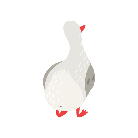 Cute White Goose Cartoon Character Back View Vector Illustration