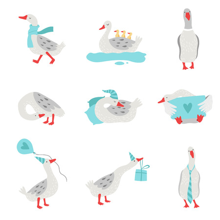 Collection of White Geese in Different Situations, Cute Birds Cartoon Characters Vector Illustration on White Background.