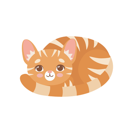 Gestreifte lustige rote Katze, die zusammengerollt liegt, niedliche Kätzchen-Tier-Haustier-Charakter-Vektor-Illustration auf weißem Hintergrund. Vektorgrafik