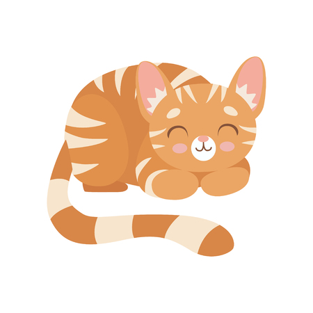 Striped Red Cat Sleeping, Cute Kitten Animal Pet Character Vector Illustration on White Background. Illustration
