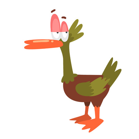 Self Confident Male Mallard Duck, Funny Bird Cartoon Character Vector Illustration