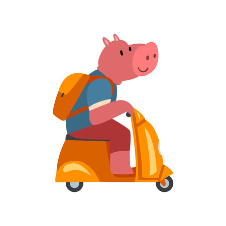 Pig with Backpack Riding Scooter, Funny Animal Character Using Vehicle Vector Illustration on White Background.
