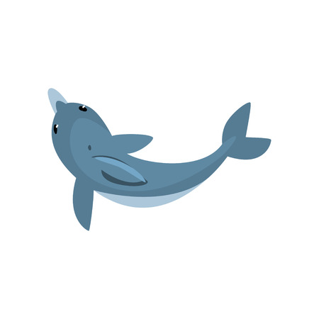 Cute Dolphin Cartoon Sea Animal Character Swimming, View From Above Vector Illustration