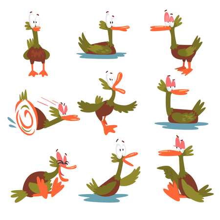 Funny Male Mallard Duck Set, Comical Bird Cartoon Character in Different Situations Vector Illustration Illustration