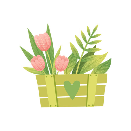 Bouquet of Pink Tulips with Leaves in Green Wooden Box, Hello Spring Floral Design Template Vector Illustration on White Background. Illustration