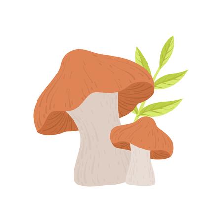 Forest Edible Mushroom, Wild Organic Product Vector Illustration on White Background.