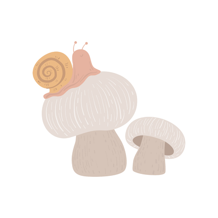 Forest Edible Champignon Mushroom with Snail, Wild Organic Product Vector Illustration on White Background.