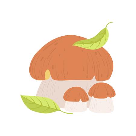 Wild Forest Edible Mushroom, Eco Organic Product Vector Illustration on White Background.