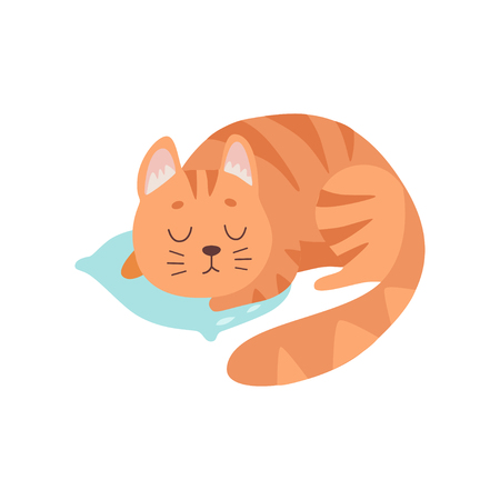 Cute Red Cat Animal Sleeping on Pillow Vector Illustration on White Background.