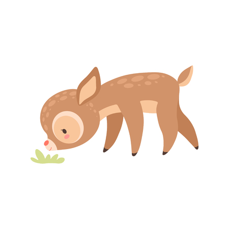 Cute Baby Deer Grazing, Adorable Forest Fawn Animal Vector Illustration on White Background.