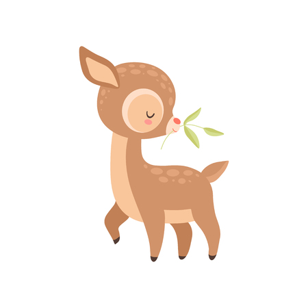 Cute Baby Deer with Twig in Its Mouth , Adorable Forest Fawn Animal Vector Illustration on White Background.
