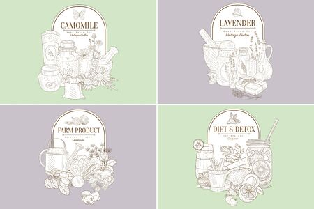 Chamomile, Lavender, Farm Product, Diet Detox Vintage Hand Drawn Labels Vector Illustration