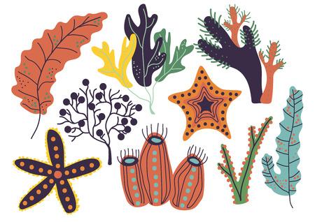 Seaweeds Set, Marine or Aquarium Underwater Plants Vector Illustration