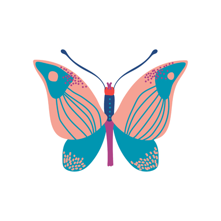 Butterfly Insect with Colorful Wings Vector Illustration on White Background.