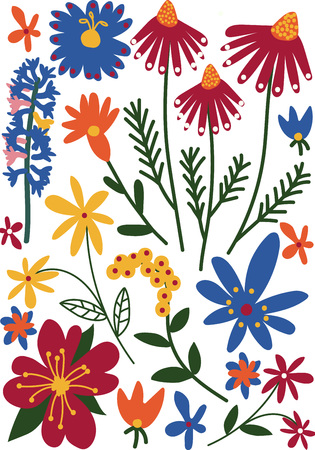 Beautiful Colorful Wild Blooming Flowers, Herbaceous Flowering Plants, Floral Seamless Pattern, Seasonal Decor Vector Illustration on White Background.