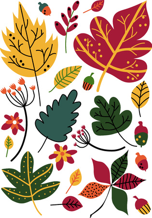 Colorful Autumn Leaves and Acorns, Floral Seamless Pattern, Seasonal Decor Vector Illustration Imagens - 118577265