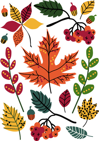 Colorful Autumn Leaves and Berries, Floral Seamless Pattern, Seasonal Decor Vector Illustration on White Background.