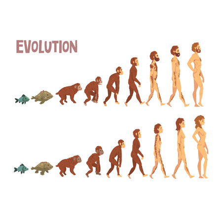 Biology Human Evolution Stages, Evolutionary Process of Man and Woman Vector Illustration