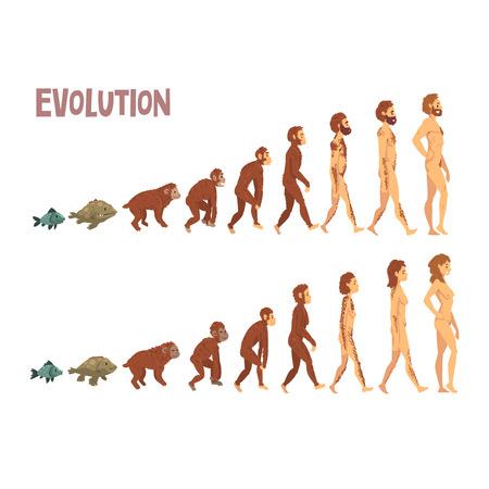 Etapas de la evolución humana de la biología, proceso evolutivo del hombre y la mujer ilustración vectorial