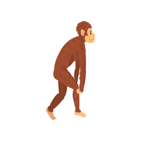 Female Australopithecus, Biology Human Evolution Stage, Evolutionary Process of Woman Vector Illustration