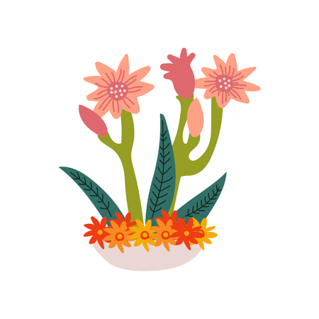 Spring Amaryllis Flowers in Flowerpot, Beautiful Potted Plant Vector Illustration on White Background.