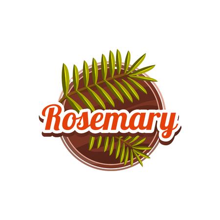 Rosemary Spice. Vector Illustration. Stock Vector - 118744044