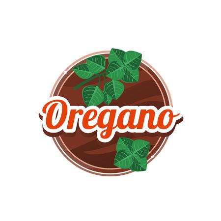 Oregano Spice. Vector Illustration.