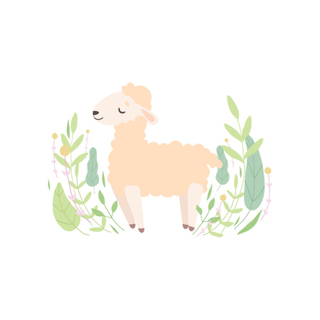 Cute Little Lamb Standing on Meadow, Adorable Sheep Animal Vector Illustration on White Background. Çizim
