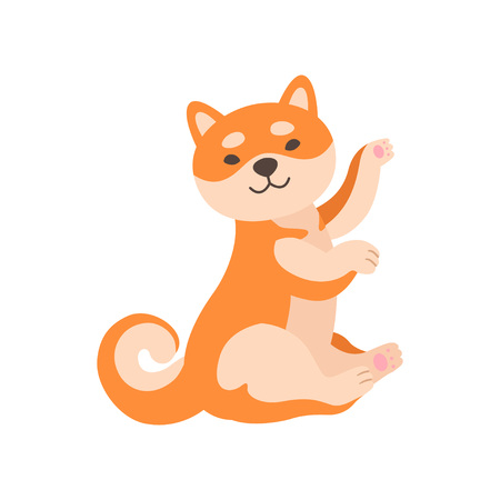 Shiba Inu Dog, Cute Adorable Japan Pet Animal Cartoon Character Sitting on Floor Vector Illustration