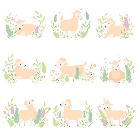 Collection of Adorable Little Lambs on Beautiful Spring Meadow, Cute Sheeps in Different Poses Vector Illustration Standard-Bild - 119146661