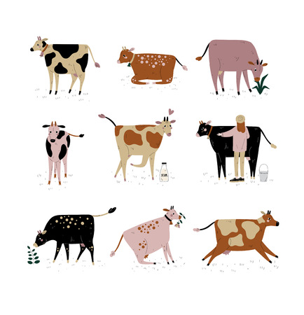Cattle Breeding Farming, Dairy Cattle, Cows of Different Breeds Set Vector Illustration