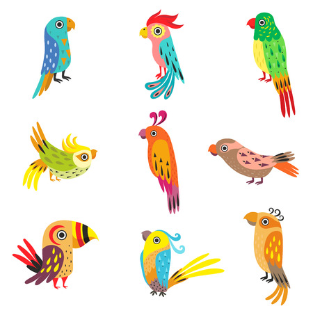 Collection of Cute Colorful Tropical Parrots Vector Illustration on White Background.