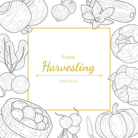 Harvesting Frame, 100 Percent Organic, Different Vegetables Monochrome Hand Drawn Vector Illustration
