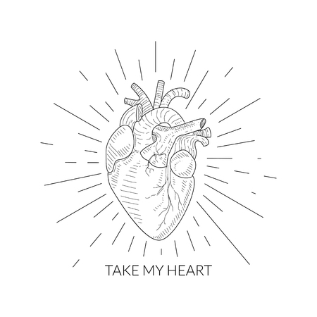 Take My Heart Quote, Human Heart Anatomical Sketch, Monochrome Hand Drawn Vector Illustration Illustration