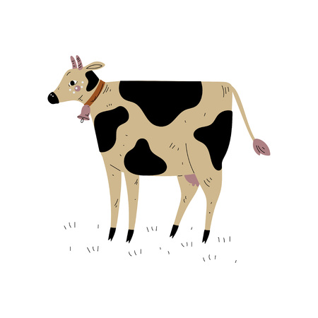 Spotted Cow, Dairy Cattle Animal Husbandry Breeding Vector Illustration on White Background.