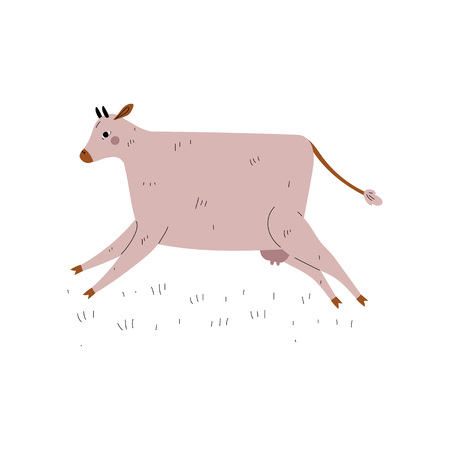 Beige Cow Jumping, Dairy Cattle Animal Husbandry Breeding Vector Illustration on White Background.
