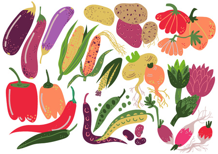 Vegetables Set, Healthy Nutrition Food, Carrot, Potato, Pepper, Radish, Eggplant, Corn Pumpkin Artichoke Vector Illustration on White Background