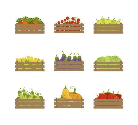 Wooden Crates with Farm Vegetables Set, Organic Food, Carrot, Tomato, Pepper, Corn, Eggplant, Farmers Market Design Element Vector Illustration on White Background. Illustration