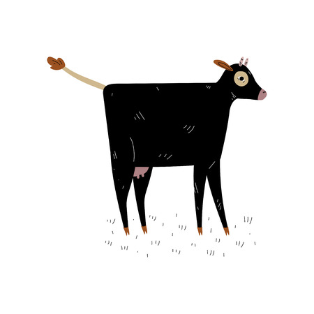 Black Cow, Side View, Dairy Cattle Animal Husbandry Breeding Vector Illustration on White Background.